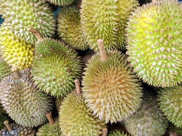 exotické plody.jpg